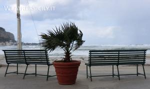Forte vento a Palermo, disagi e danni