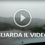VIDEO ALIA