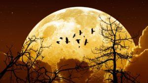 Lunedì sera apparirà la Superluna anche in Sicilia. Ecco dove si potrà vedere con più facilità