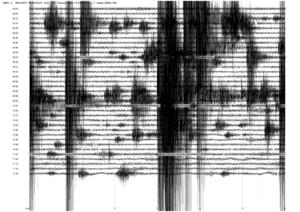 Etna, sciame sismico sul versante sud. Oltre 60 scosse in poche ore