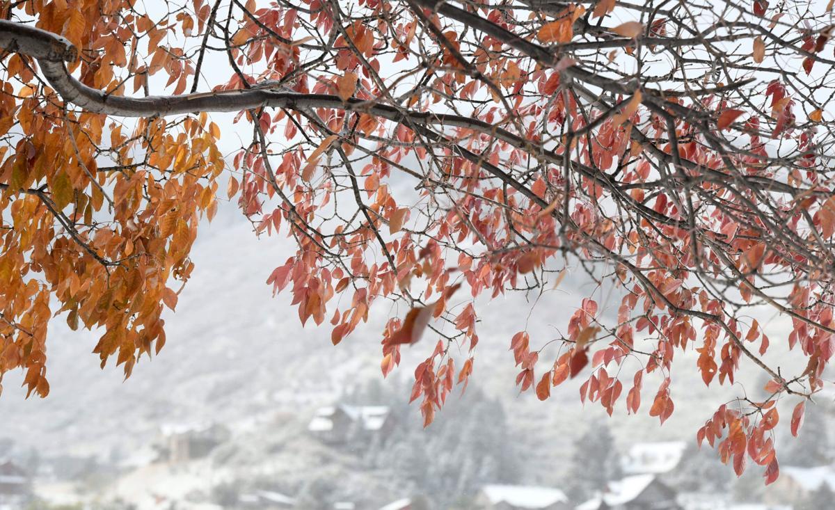 neve autunno