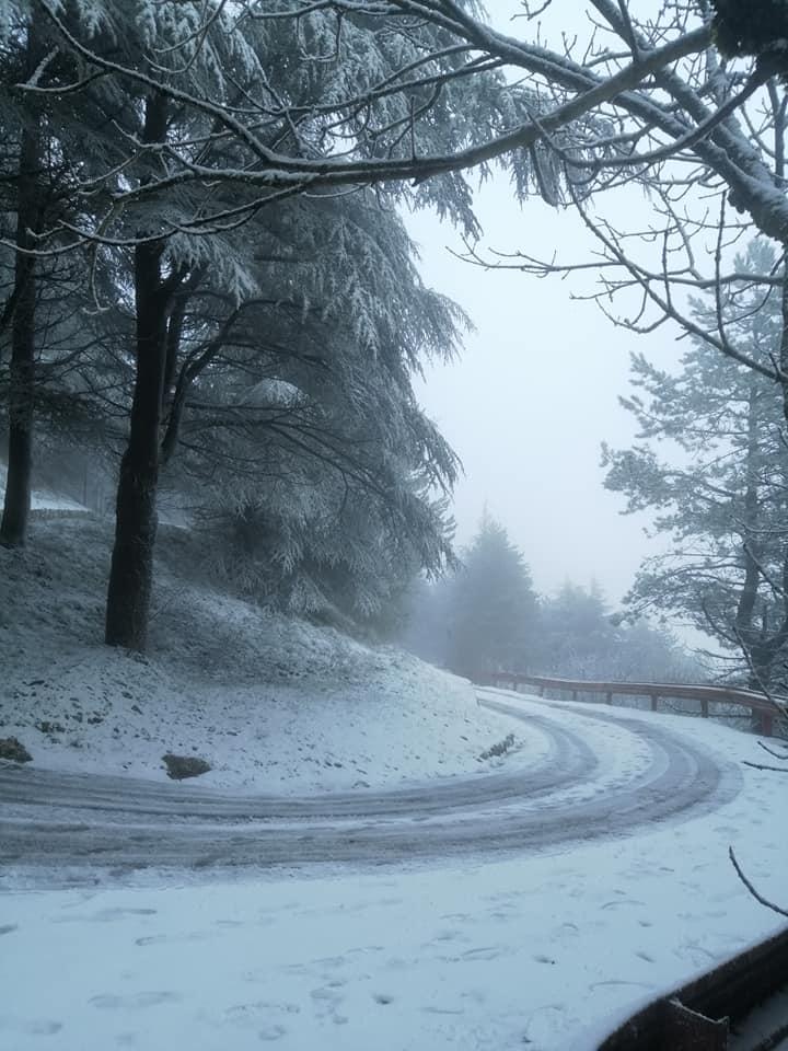 Sicilia: neve su monte Cammarata - 18 gennaio 2021