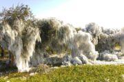 Sicilia, gelate in arrivo: martedì attese diffuse minime sotto zero.