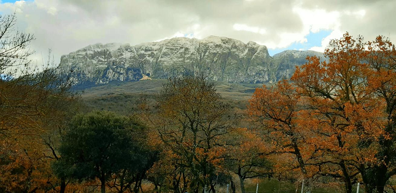 Sicilia - Rocca Busambra il 18 gennaio 2021